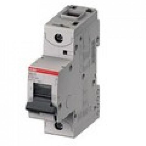 Автоматический выключатель 1 полюс. S801C D25 2CCS881001R0251